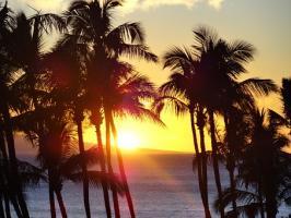 Warto odwiedzenia Bahamy